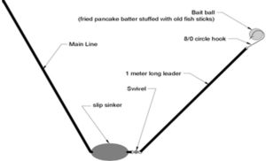 Fishing Tips for Beginners - Setup